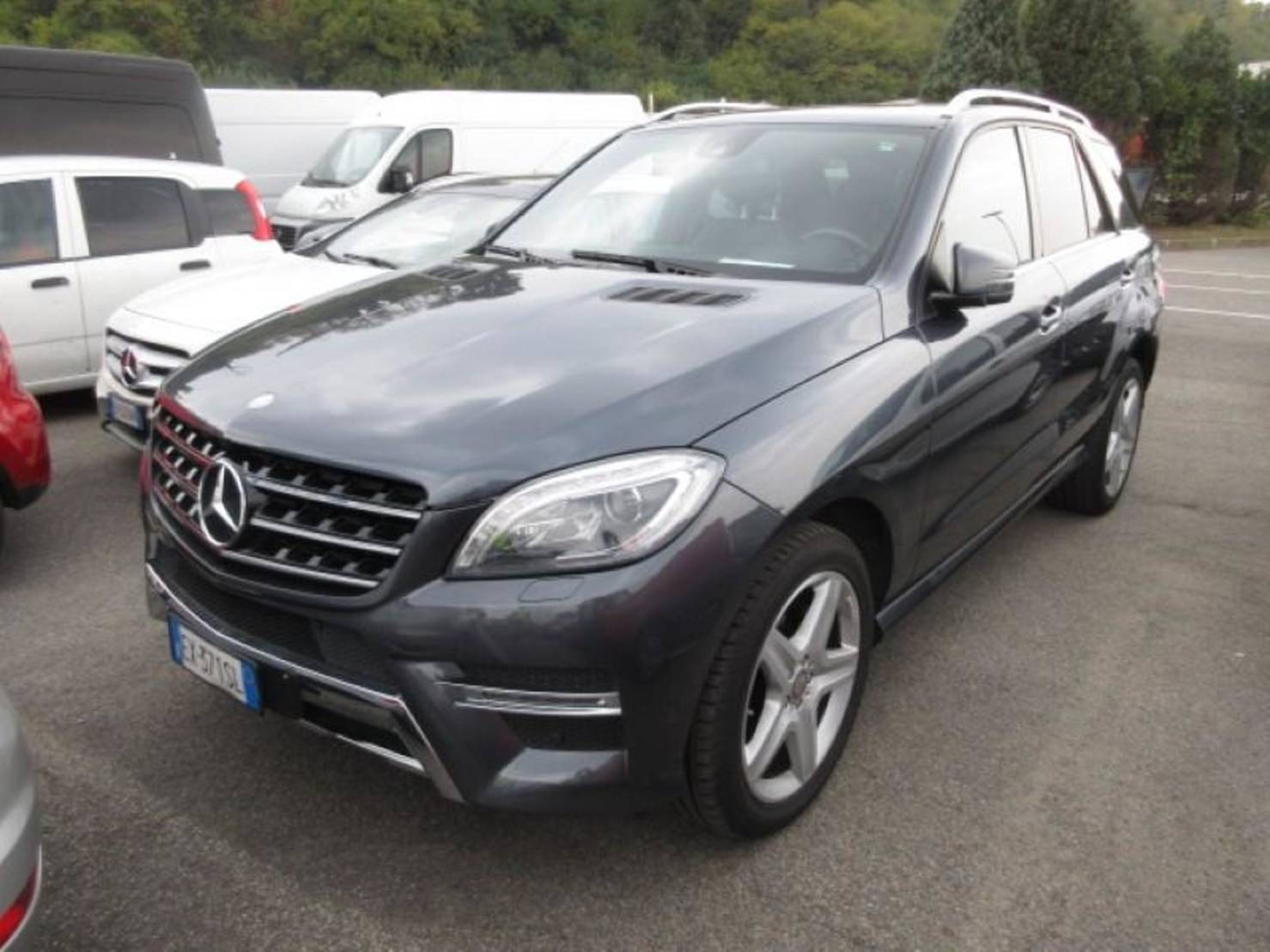 Mercedes-Benz m 250 Bluetec Premium detail1